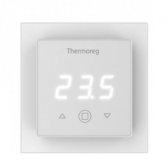Thermoreg TI - 300